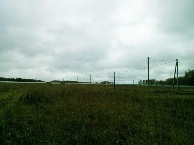 дачный поселок Березки