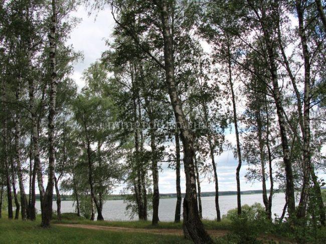 дачный поселок Можайское море