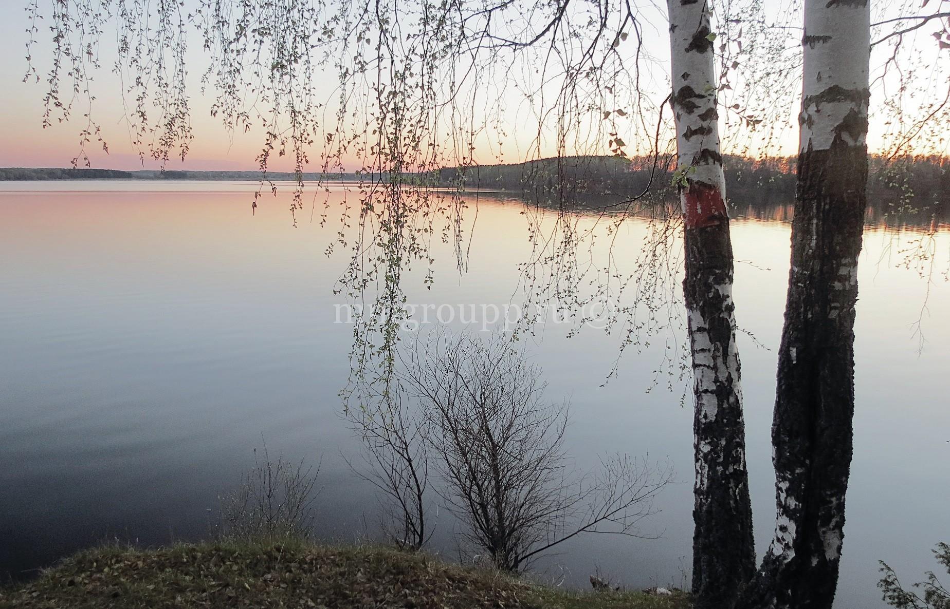 """Весна в ДНП """"Можайское Море"""""""